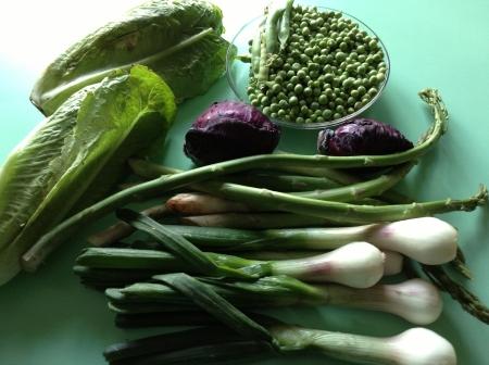 Verduras para esta semana, del huerto de mi amigo Luis